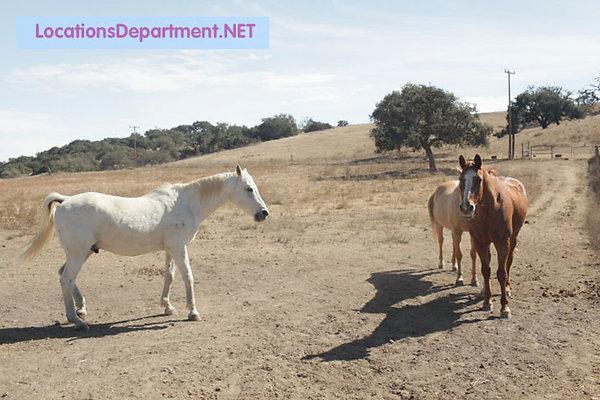 LocationsDepartment.Net Ranch 2005 038