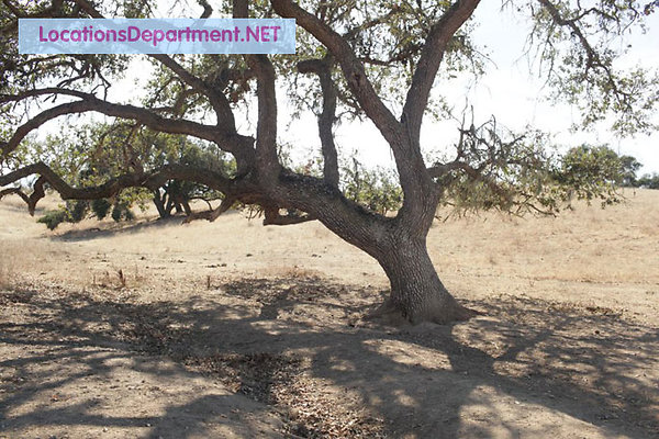 LocationsDepartment.Net Ranch 2005 034