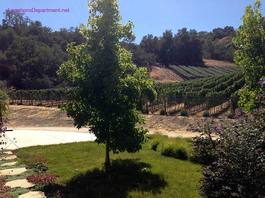 LocationsDepartment.Net Ranch 2018 Vineyard 051
