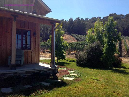 LocationsDepartment.Net Ranch 2018 Vineyard 049