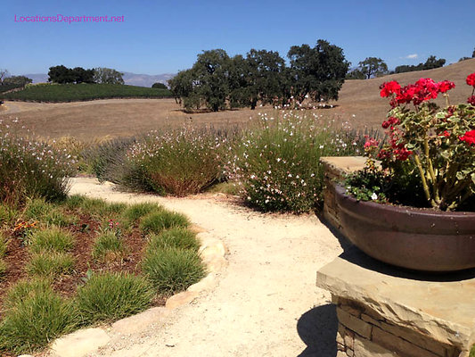 LocationsDepartment.Net Ranch 2018 Vineyard 043