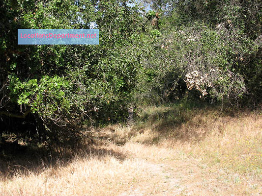 LocationsDepartment.net Ranch-2002 166