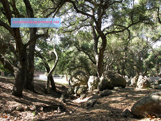LocationsDepartment.net Ranch-2002 101