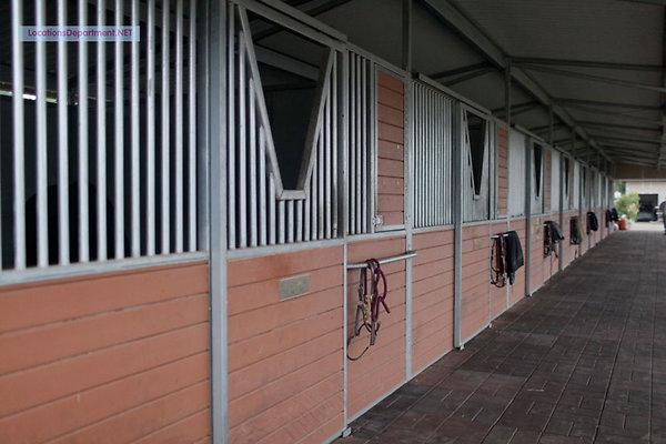 LocationsDepartment.Net Ranch 2013 027